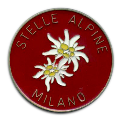 logo_stellealpine